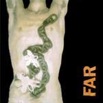Far__listening_game_4